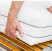 bed bug infested mattress inspection peterborough